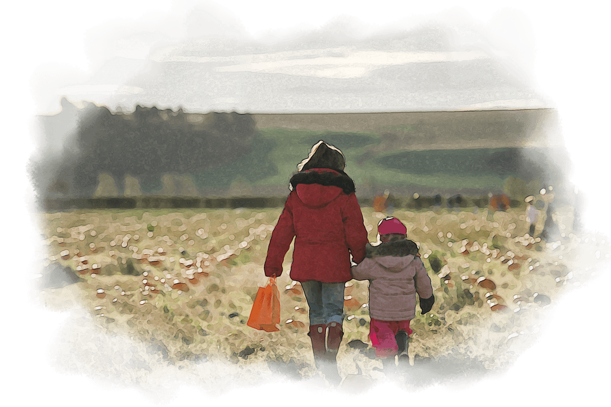Picking Pumpkins in East Lothian