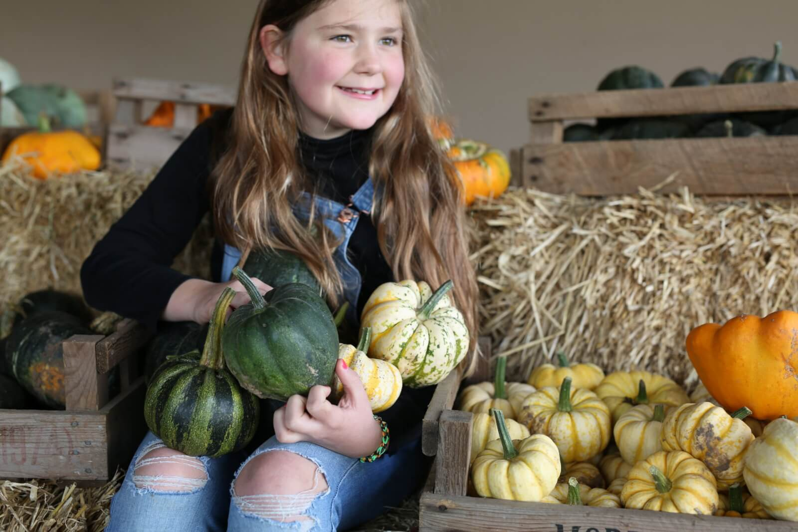 Smiling child holding various Pumpkins from our East Lothian Pumpkin Patch